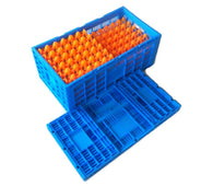 Amazing Folding Egg Crate