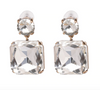 Alana Earrings - Clear
