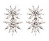 Aubree Earrings - Clear