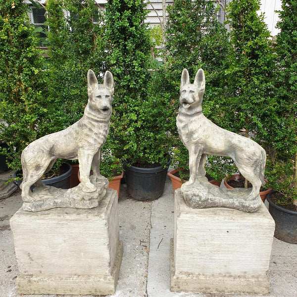 Pair Of Composite Stone Dogs