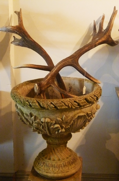 Pair Of Large Antlers