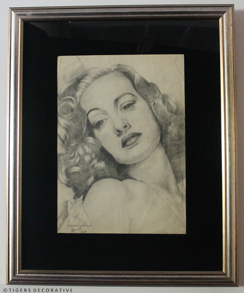 Hollywood Star's Framed Sketches
