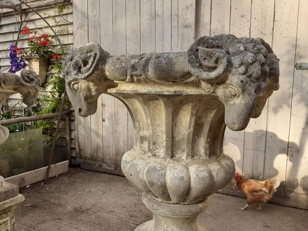 A Pair Of Rams Head Urns On Plinths