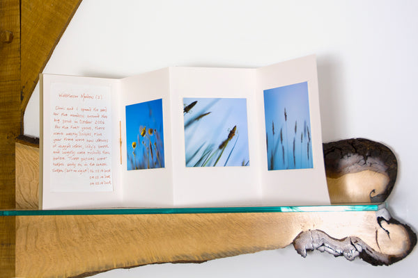 Photographer Robin Hutt used Accordion Sketchbooks in her Fairlight End exhibition.