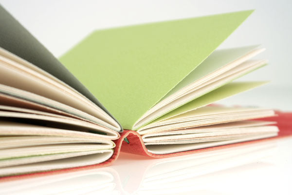Pink and Green Journal Hand Made in Leather 50% off