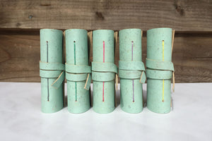 Row of Miniature Journals in Mint Green Cork with colourful spine stitching.