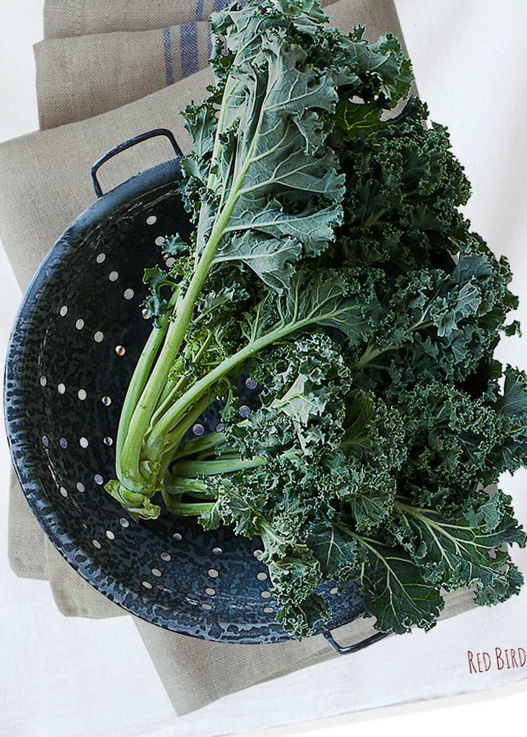 Gift giving made easy, a gift for the cook, Kale is beautifully hand printed into cotton flour sack. Original photography, Modern farm style.