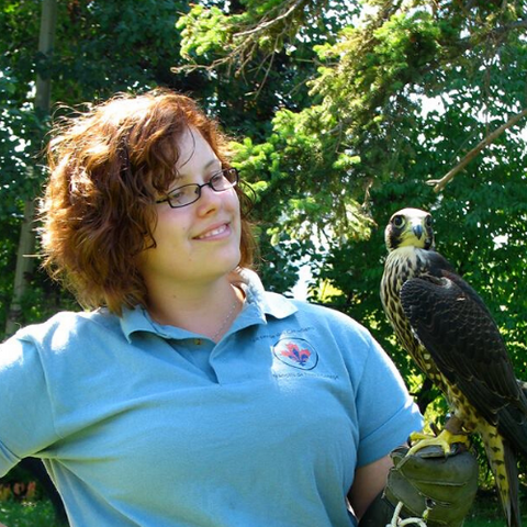 Publisher Amanda Ramsay holding a peregrine falcon named Scarlet.