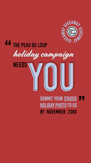 PDL 2020 Holiday Campaign: We Need YOU!