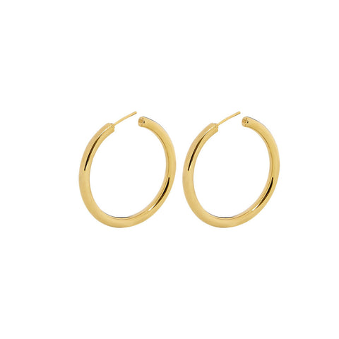 Gold Elongated Squiggle Earrings