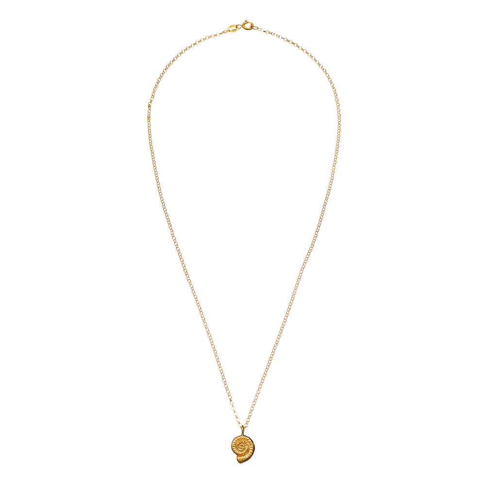 9ct Gold She Shell Necklace