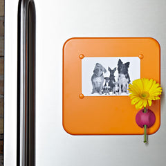 Lulalu Photo Frame with Vase-Lulalu