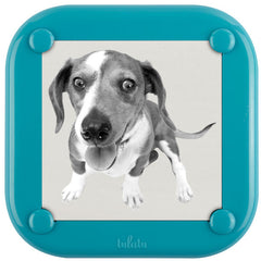 Lulalu Photo Frame Blue Popsicle-Lulalu
