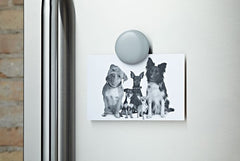 Lulalu Fridge Clip in Silver Sprinkles