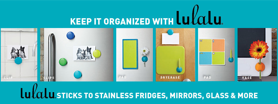 Clips stick to stainless steel fridges, glass, and mirrors.
