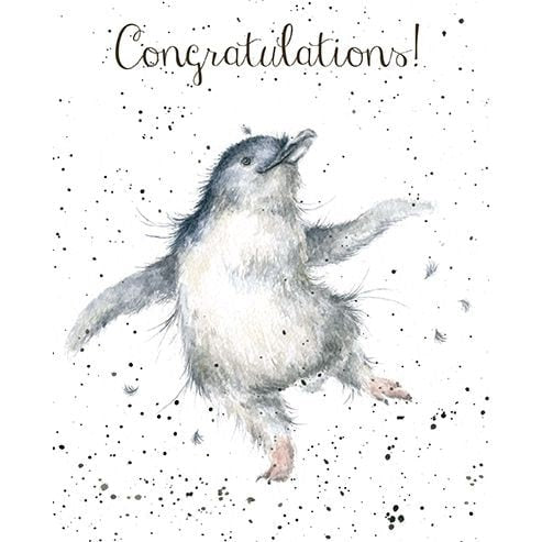 Wrendale Designs - 'Hooooray!' Congratulations Card