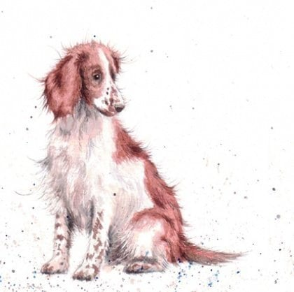Wrendale Designs - 'Loyal Friend' Card