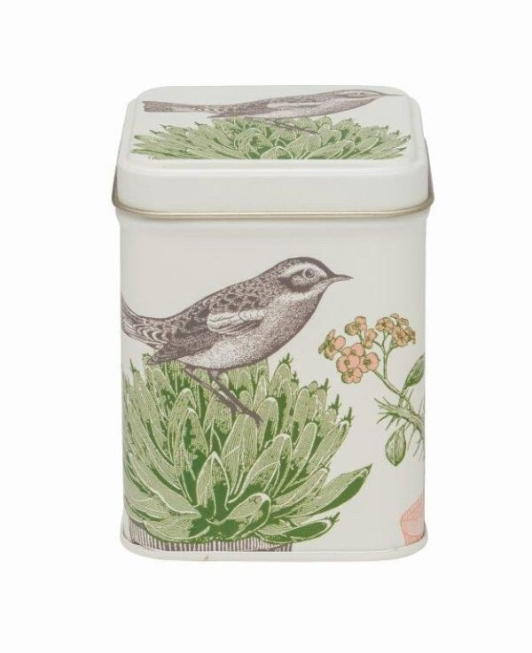 Thornback & Peel - Cactus and Bird Square Tin