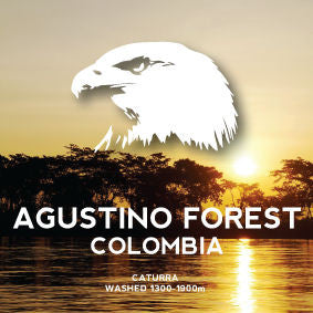 Avenue Coffee - Agustino Forest (Colombia)