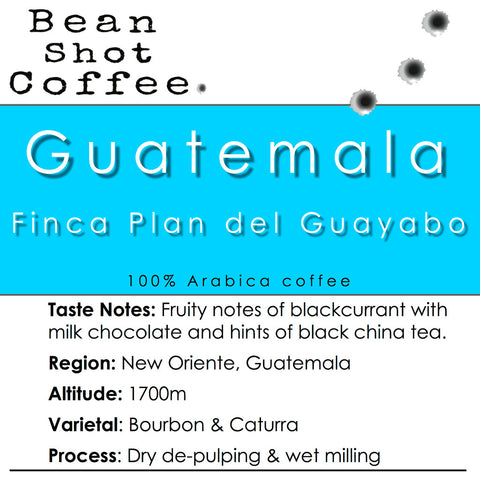 Bean Shot Coffee - Guatemala Finca Plan Del Guayabo