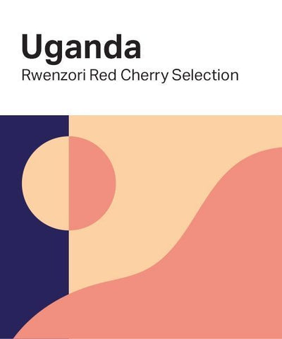 Casa Espresso: Uganda, Rwenzori Mountain, Red Cherry Selection, Natural