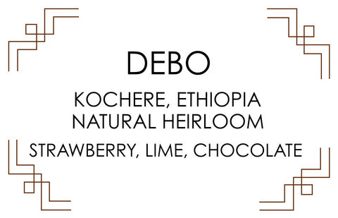 Cast Iron Coffee Roasters: Ethiopia, Debo, Kochere District, Natural