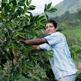 Clifton Coffee - Peru: Finca La Encantada - Washed