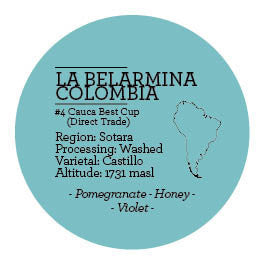 Climpson and Sons - Single Origin: La Belarmina Microlot, Sotara, Colombia