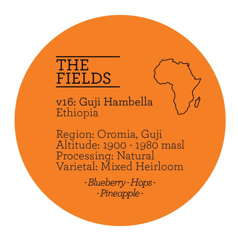 Climpson & Sons - Fields V16: Guji Hambella, Ethiopia - Natural