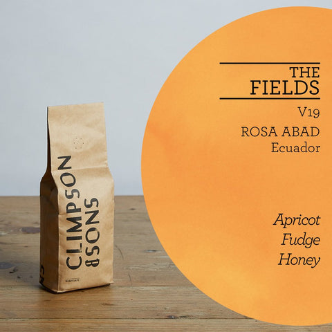 Climpson & Sons - Fields V19: Rosa Abad, Ecuador