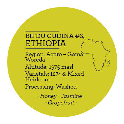 Climpson & Sons - Single Origin: Bifdu Gudina Lot 6, Ethiopia