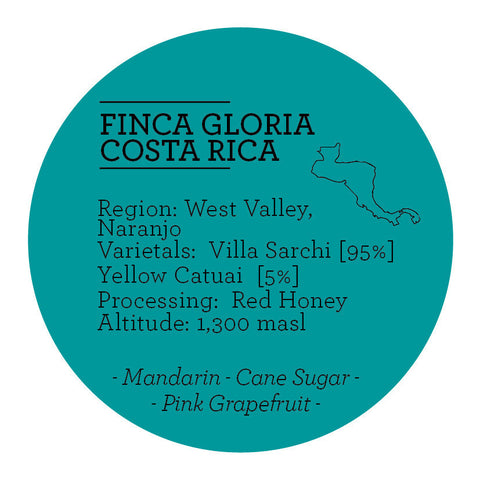 Climpson & Sons - Single Origin: Finca Gloria, Costa Rica