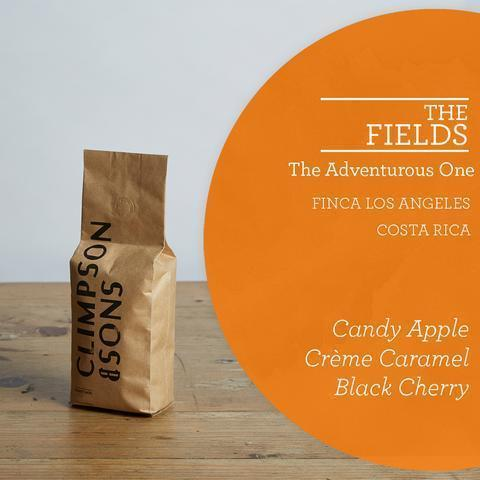 Climpson & Sons: The Fields: Costa Rica, Finca Los Angeles, Pulped Natural