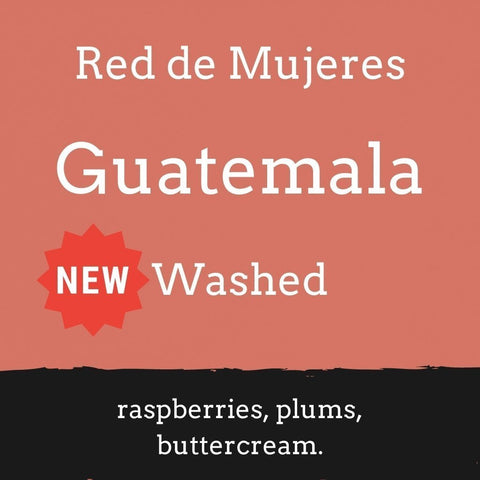 Foundry Coffee Roasters: Guatemala, Red De Mujeres, Washed, Whole bean