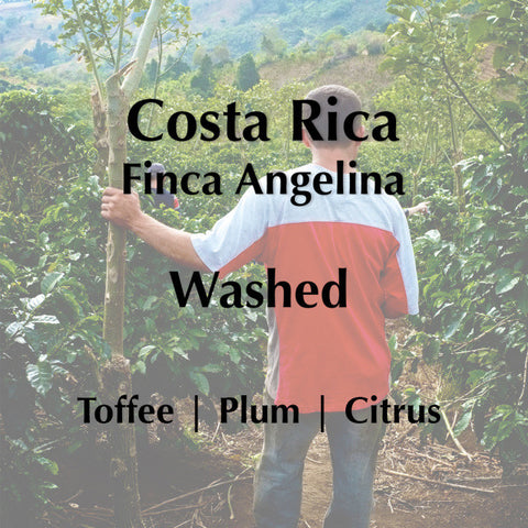Horsham Coffee Roaster - Costa Rica Finca Angelina