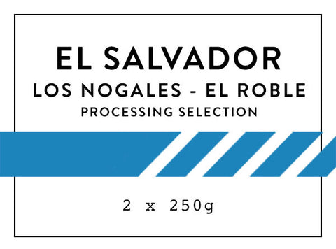 Horsham Coffee Roaster - El Salvador Los Nogales - El Roble - Processing Selection