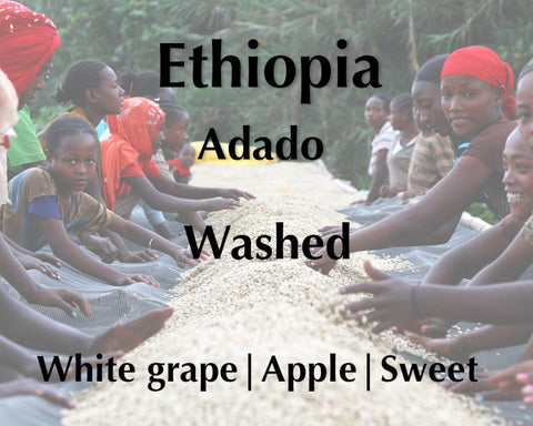 Horsham Coffee Roaster - Ethiopia Adado Washed - New Crop
