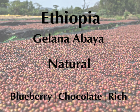 Horsham Coffee Roaster - Ethiopia Gelana Abaya Natural - New Crop
