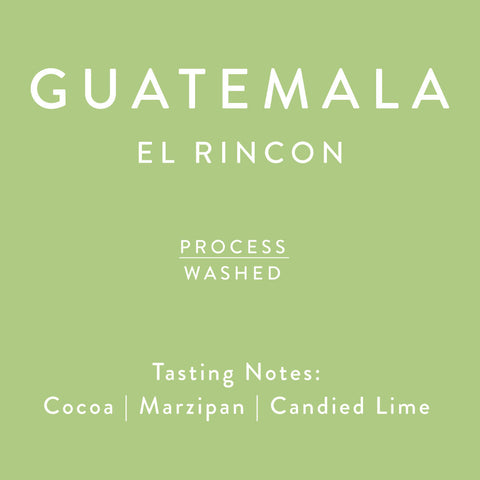 Horsham Coffee Roaster - Guatemala - El Rincon - Washed
