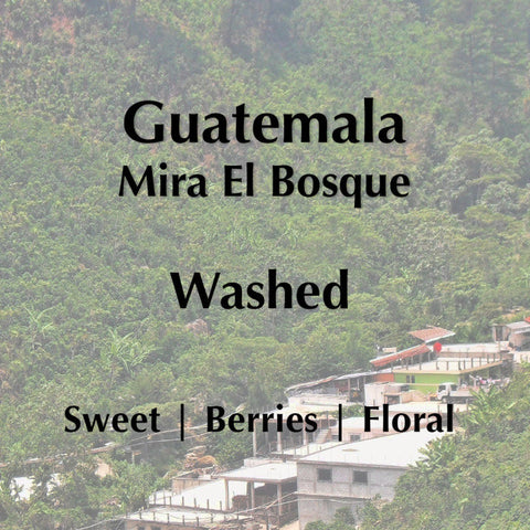Horsham Coffee Roaster - Guatemala Mira El Bosque