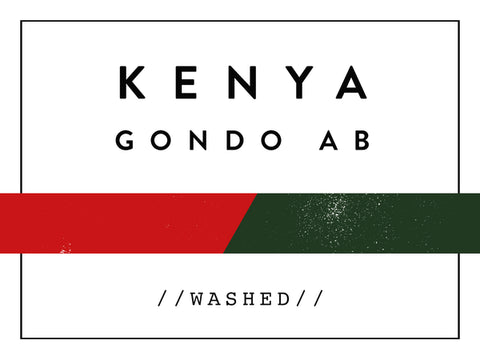 Horsham Coffee Roaster - Kenya Gondo AB
