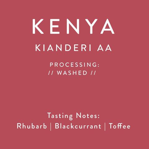Horsham Coffee Roaster - Kenya - Kianderi AA - Relationship Coffee