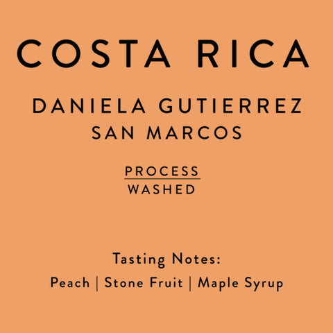 Horsham Coffee Roaster: Costa Rica, Daniela Gutierrez San Marcos, Washed