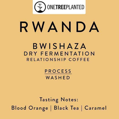 Horsham Coffee Roaster: Rwanda, Bwishaza, Dry Fermentation, Washed