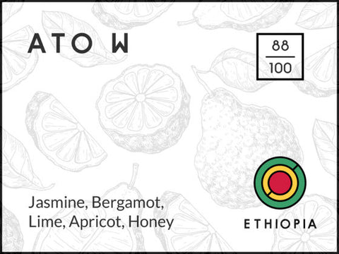 Long and Short Coffee: Ato - Ethiopia - Washed