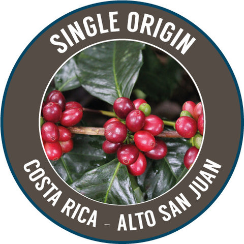 Rinaldo's Coffee: Costa Rica, Alto San Juan, Washed