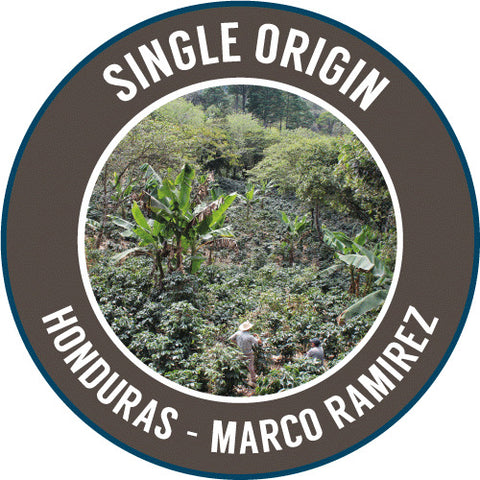 Rinaldo's Coffee: Honduras, Marco Ramirez, Washed