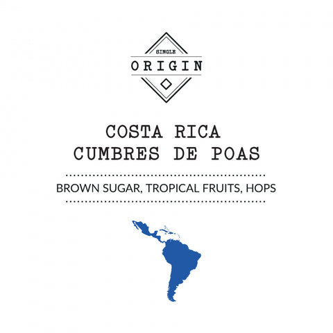 Rounton Coffee Roasters - Costa Rica Cumbres De Poas - Honey process