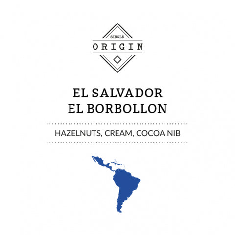 Rounton Coffee Roasters: El Salvador El Borbollon