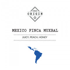 Rounton Coffee Roasters - Mexico Finca Muxbal